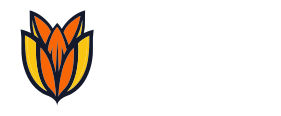 Bloom.host Server Status